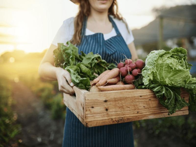 Bulk Natural Foods